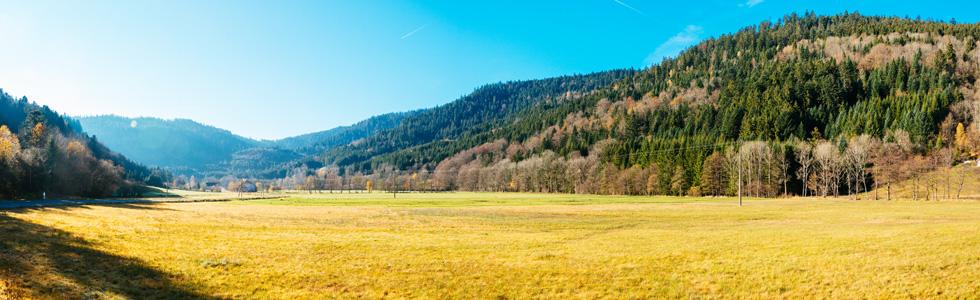 Bandeau-Ban-sur-Meurthe